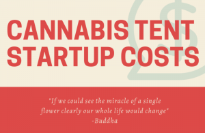 Cannabis Tent Startup Costs